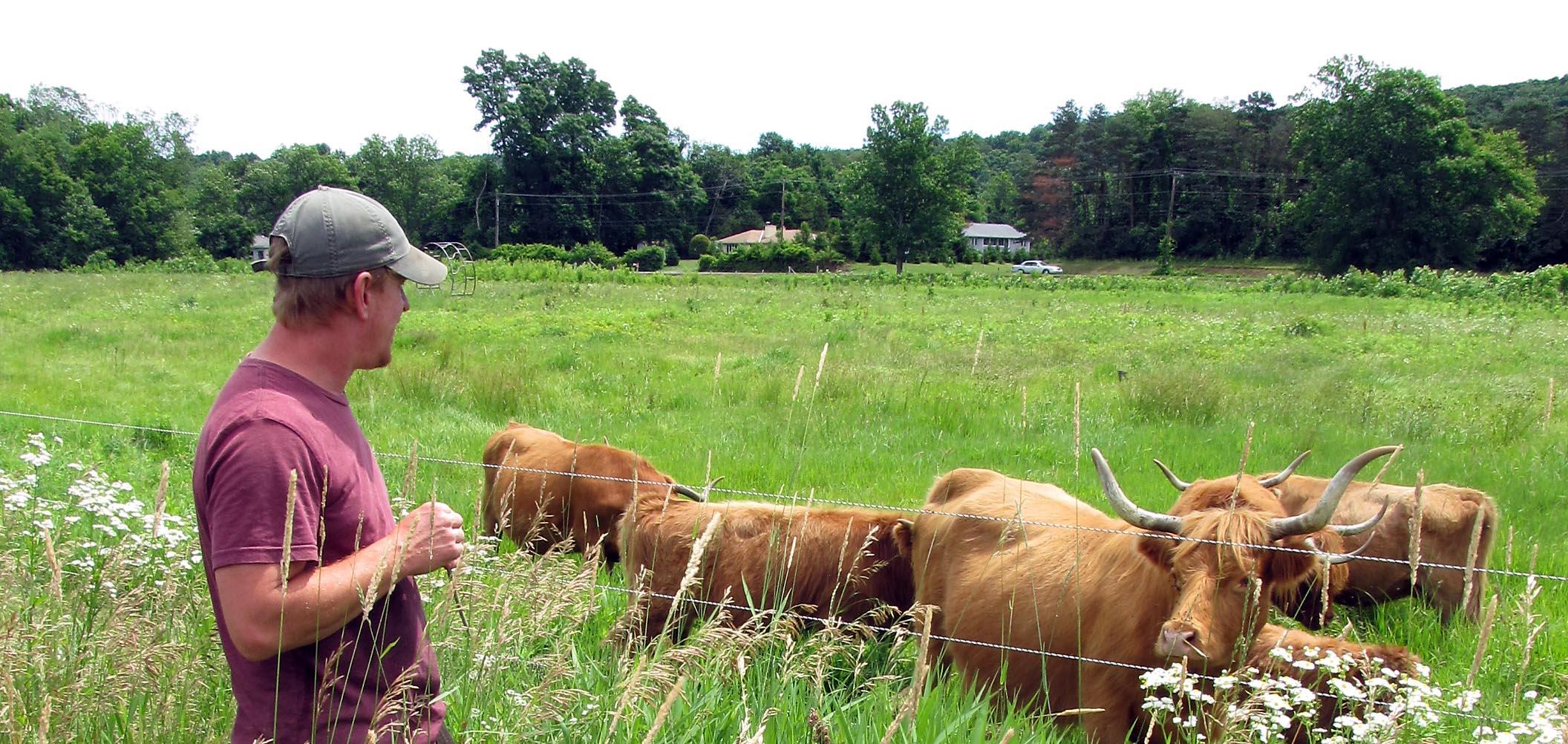 Sepascot Farm