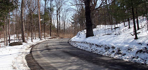Landmark Properties has proposed carving back the hillside along the right side of Feller-Newmark Road (above), regrading the road to a more even slope and removing trees within 15 feet of the road's edge.